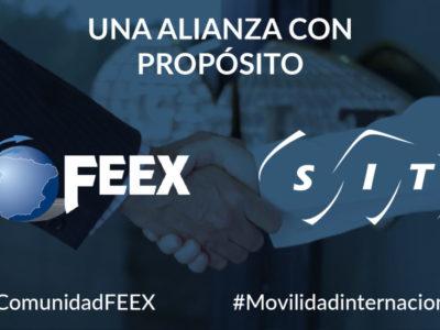 SIT SPAIN AND FEEX, UNA UNIÓN CON PROPÓSITO